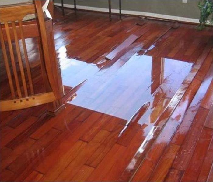 Water Damage Where to Look For Water Damage