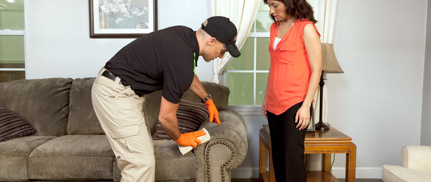 Princeton, NJ carpet upholstery cleaning